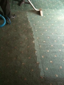 Pub Restaurant carpet clean