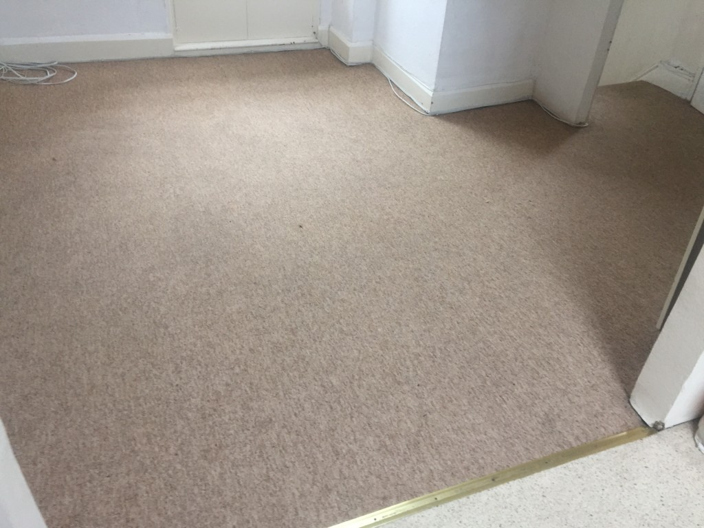 Carpets Cleaned Weston super Mare Rug Cleaning November 2015-4