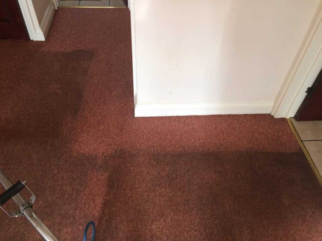 Upholstery Carpet Cleaning weston super mare carpets cleaner cleaned bristol taunton somerset