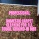 Portishead Somerset Deep Carpet Clean Steam Cleaning Rugs Carpets Professional Company Family Friendly Children Kids Pet Dog Cat Deoderise