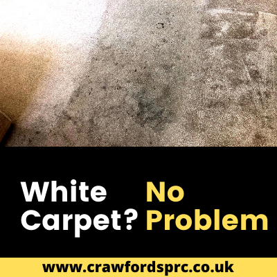 White Carpet Cleaning Weston super Mare Portishead Somerset Deep Clean Steam Cleaning Rugs Carpets Professional Company Experts - 4